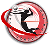 Sport Consulting Pro
